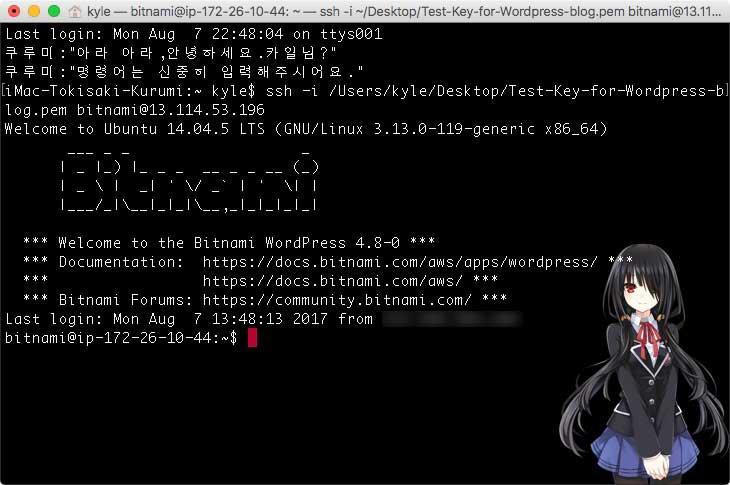 터미널에서 리눅스 서버에 접속한 모습