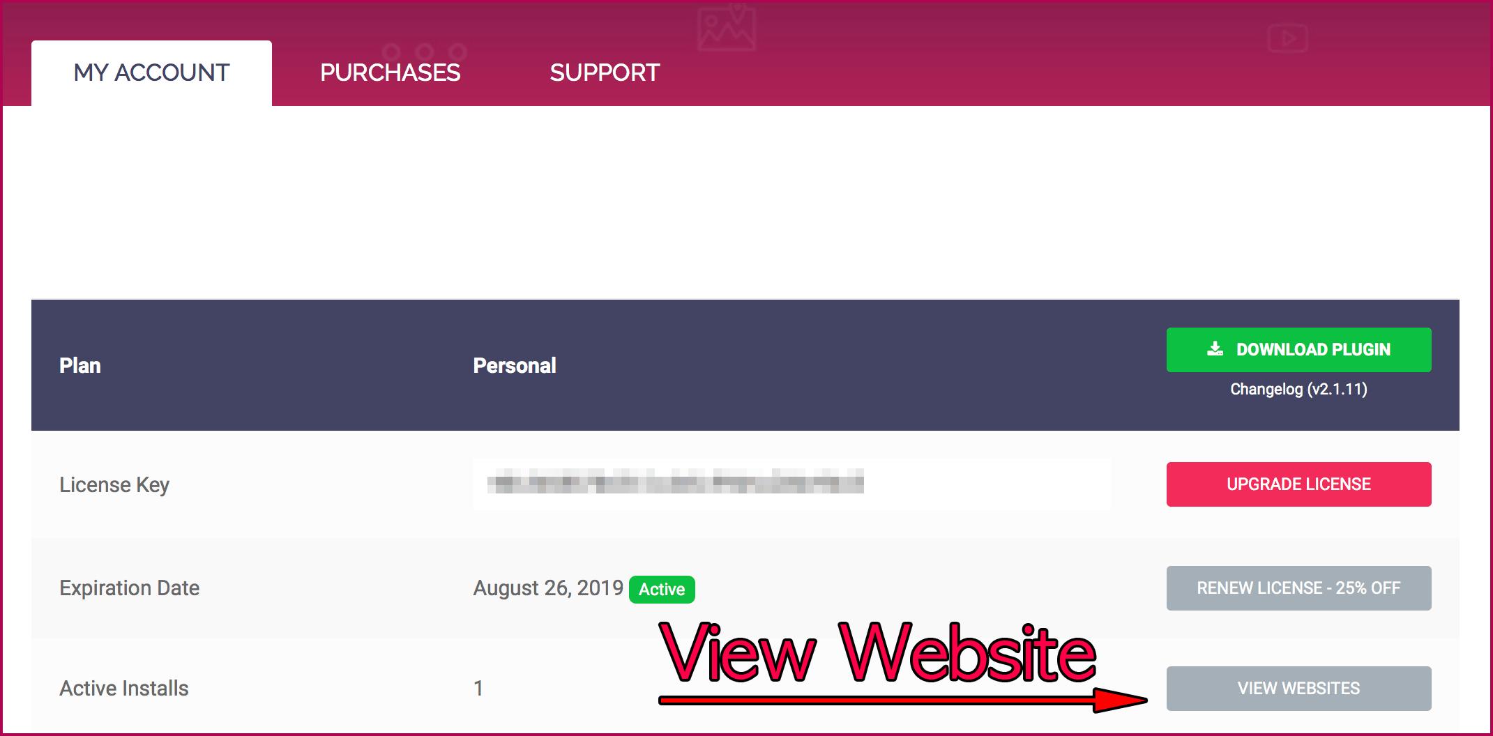 View Website 버튼 클릭