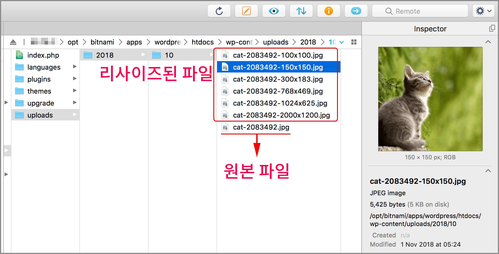 원본파일과 리사이징된 모든 이미지 파일들이 있다. 파일이름은 '원본파일이름-가로x세로.jpg' 같은 이름으로 지어진다
