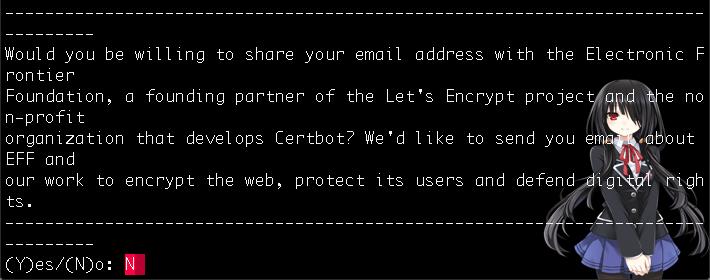 렛츠 인크립트 소식지 이메일 수신 여부 확인