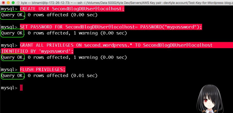 새로운 mySQL 사용자 만들기