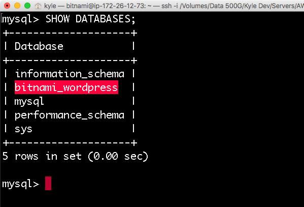 데이터베이스 목록 리스트