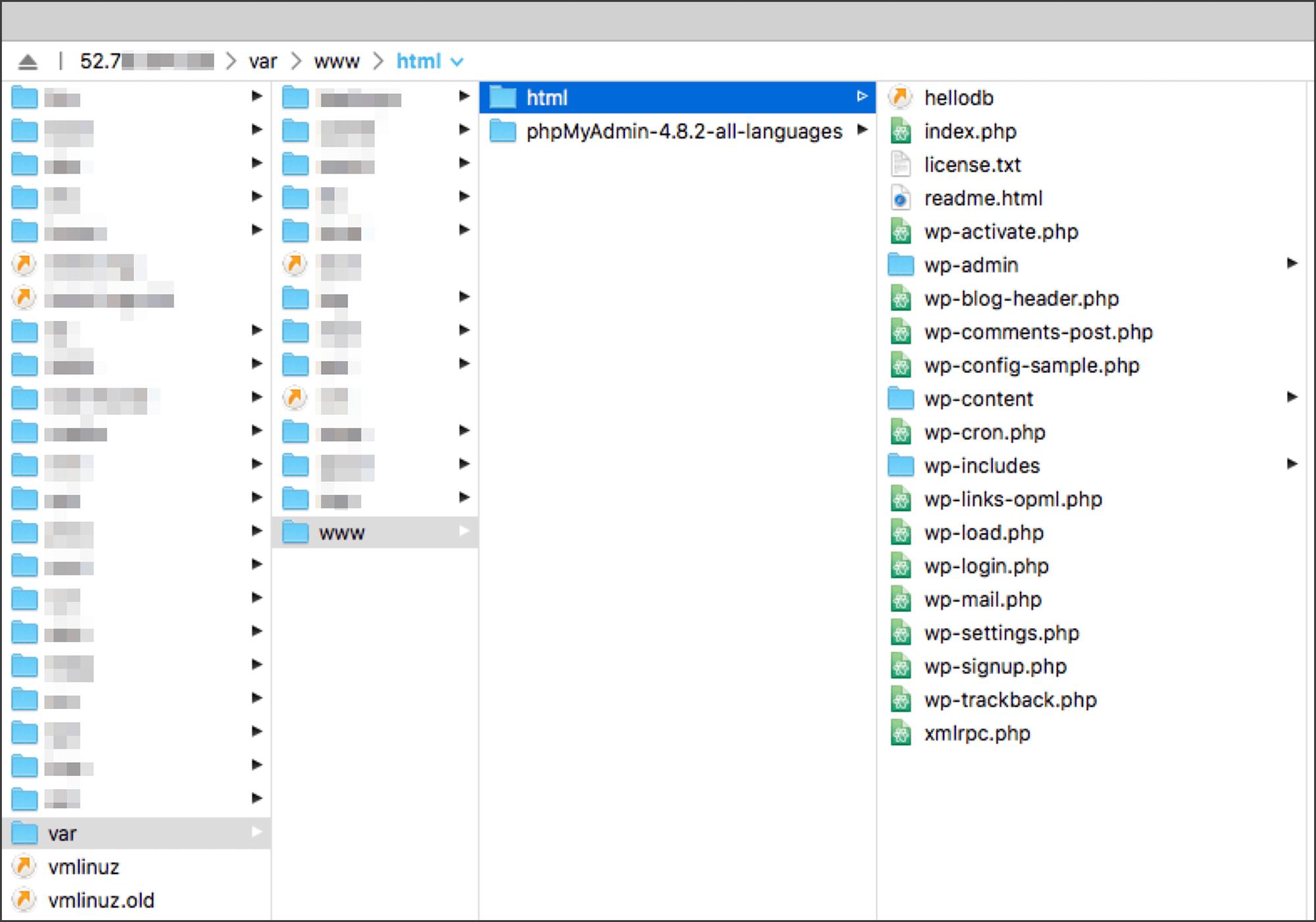 SFTP 클라이언트에서 본 워드프레스 디렉토리 구조 및 파일