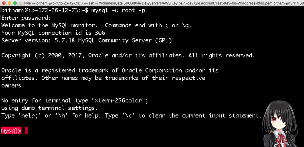 mySQL 시작화면
