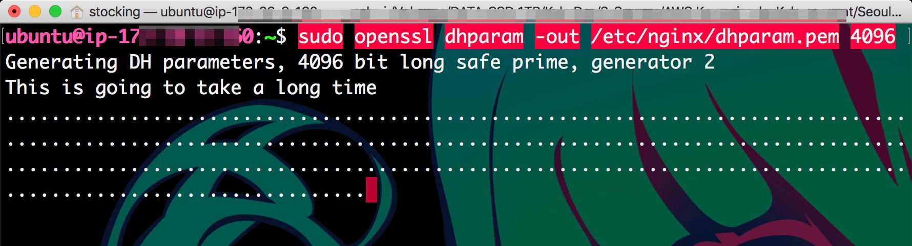 openssl 명령어를 사용해서 4096 비트 암호화 파일 생성시작... 화면에 점점점이 가득차며 진행중임을 알려주고 있다